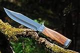 VIKING GEAR® klassisches Messer - Einhandmesser 23cm - Gürtelmesser - Jagdmesser - Arbeitsmesser - Gartenarbeit - Survival - Freizeit - Messer - Prepper Knifer - Holster,schwarz - Messer Silber,braun