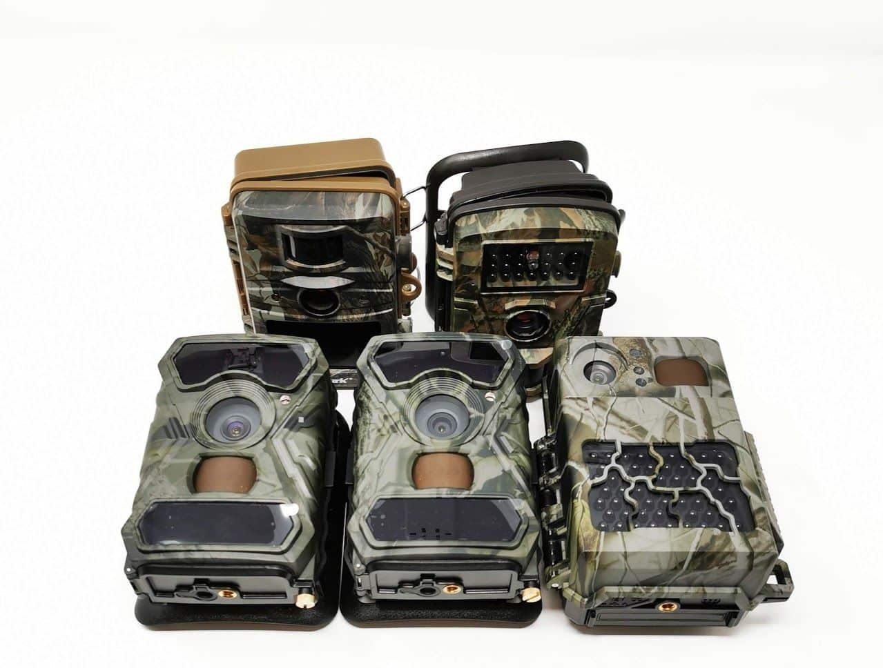 Wildkamera Test & Kaufberatung – 5 Modelle im Vergleich