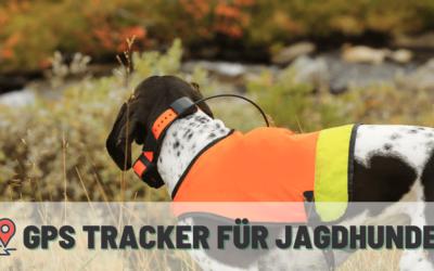 GPS Tracker für Jagdhunde – Test / Review / Kaufberatung